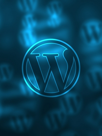 A Better Understanding of the Basics of WordPress