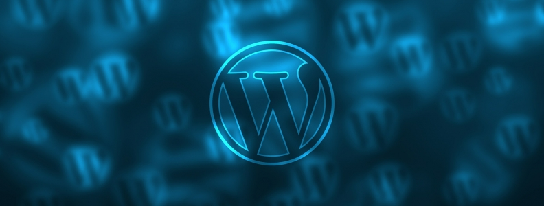 A Better Understanding of the Basics of WordPress